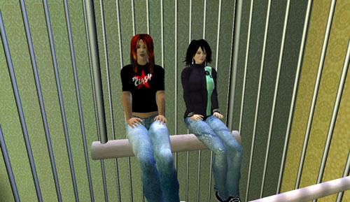 2-avis-in-a-birdcage.jpg