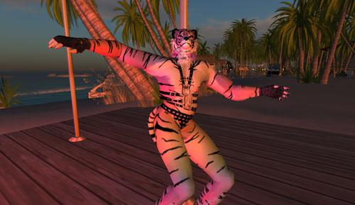 dance-pole-tiger.jpg