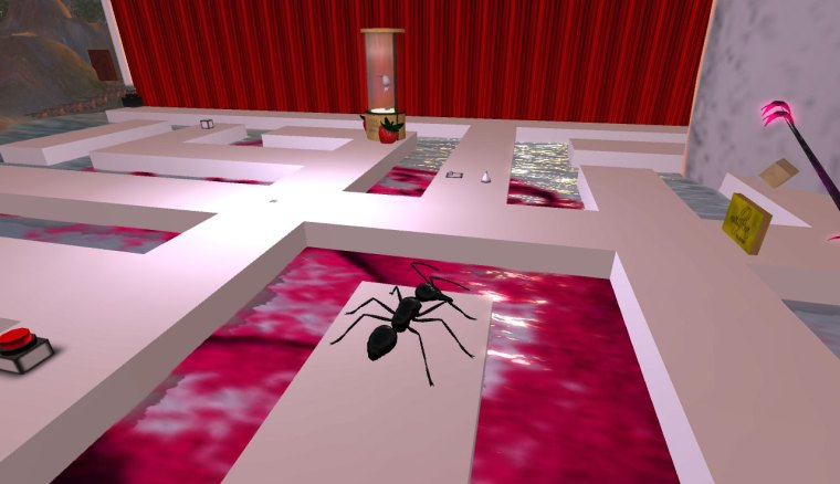 Ant and nonnatus korhonen maze, mellfera