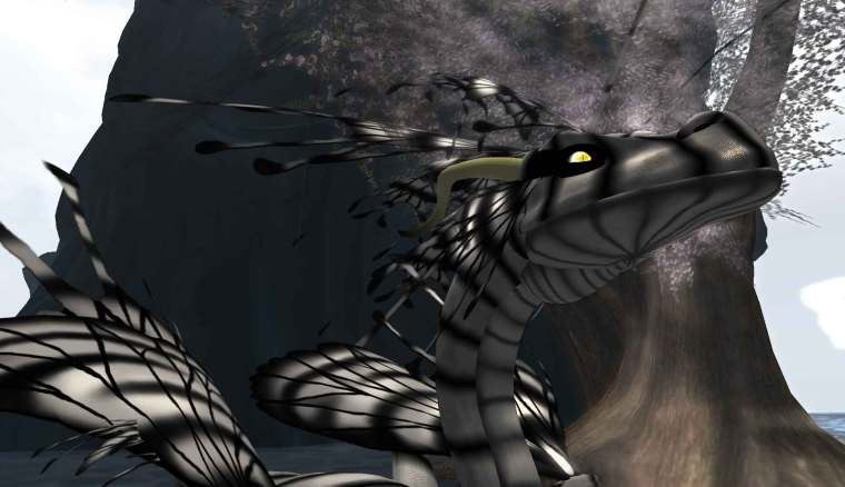 Fae Dragon 'Anise'
