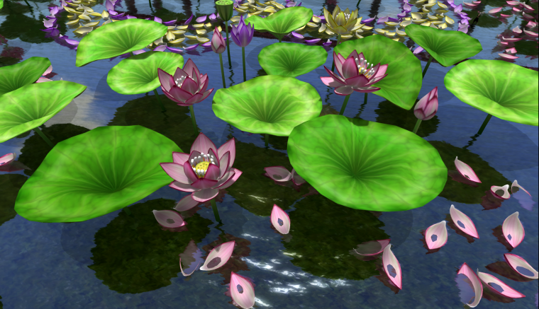Donpatchy Dagostino's Lotus flowers